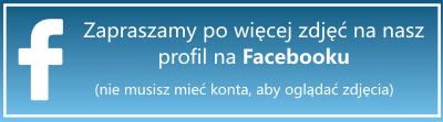 facebook_przycisk